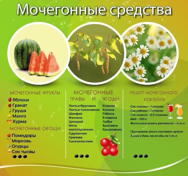 Мочегонные средства для похудения травы